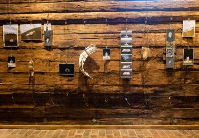 Работы художницы из Украины выставлены в часовне Вроцлава