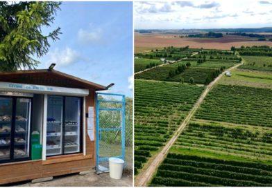 «Честная лавка» с фермерскими продуктами открылась в Гдыне